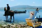 Resort-in-Sardegna-Horse-Country-Escursione-a-Cavallo-marceddi