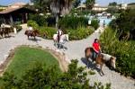 Resort-in-Sardegna-Passeggiate-a-Cavallo