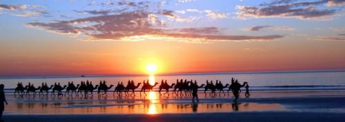 Stoke_Morocco_Camel_Beach