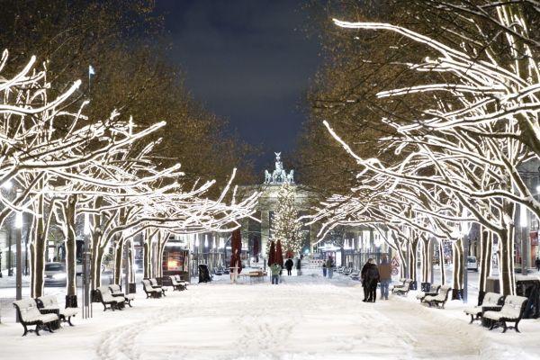 berlynas1